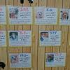 保護犬パーク長居店 2019.5.25