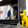 ペット市場が成長する中国