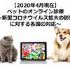 【2020年4月現在】ペットのオンライン診療~新型コロナウイルス拡大の影響に対する各国の対応~