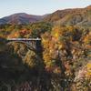 【宮城旅行記①】紅葉シーズンの鳴子峡を撮りに行ってみた