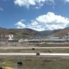チベット旅行 3 青蔵鉄道で葦と化す
