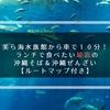 美ら海水族館から車で10分! ランチで食べたい最高の沖縄そば&沖縄ぜんざい【ルートマップ付き】