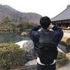 【京都嵐山】3大観光地散歩「渡月橋」「天龍寺」「竹林の小径」