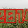 【2014年】「耕地放棄面積」ランキング