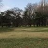 広々すぎる公園独り占めで笑う犬