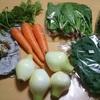 食べチョクで野菜セットをお取り寄せ【高知県・中里自然農園】