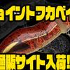 【ノリーズ】I字系ジョイントトップウォーター「ジョイントフカベイト」通販サイト入荷!