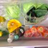 今週のレッスンと、うちの冷蔵庫事情。