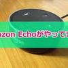 【レビュー】Amazon Echo Dotは生活が超快適になる神スマートスピーカーだった!「徹底レビューで魅力を紹介!」