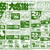 企画 書き版チラシ 創業55周年 サミット 6月20日号