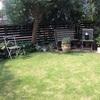 庭の様子と特売コーナー