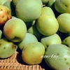 梅の実を採ろう