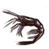 5分間スケッチ こんな時だからこそアマエビを描くのです編