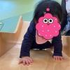 次女サンゴ、0歳8ヶ月 身体の発達と情緒面の発達の様子