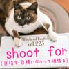 【週末英語#223】「shoot for」には「目標に向かって頑張る・目指す」という意味がある