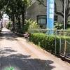 ポケモンGO 和歌山県和歌山市でポケ活してきました。