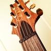 ダダリオの弦を張ってみています。