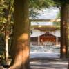 【伊勢国一之宮】椿大神社(つばきおおかみやしろ)とサルタヒコ伝説