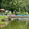 郷土の森公園 つり池(東京都府中)