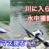 サクラマスの水中撮影に成功!!ルミカ BiRod 7.5mのロングポールのレビュー!!