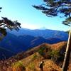 久々の山行きは…高尾山へ〜❗️