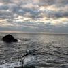 城ヶ島 ヒナダン 石鯛釣り 釣行記 2016.11.29