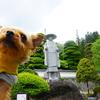 カタクリの花と厄除けで有名な朝日村【古川寺】