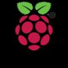RaspberryPiに固定IPを割り当てる