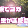 【ヨガ体験】札幌ヨガスタジオ ヨガシャラの感想と素敵な出会い