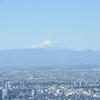 東京出張二日目、そして「君の名は。」聖地へちょっとだけ行ってきたお話
