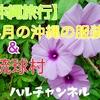 【沖縄旅行】4月の沖縄の服装&琉球村。