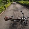 ブロンプトン号転倒 公共交通機関の自転車輪行のルールを紹介 リアキャリアを外した弊害でブロンプトン号を転倒させた話も