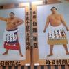 大相撲初場所と両国めぐり