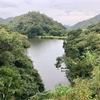 神長池(兵庫県南あわじ)