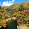 紅葉を見に那須塩原に行ってきた(もみじ谷大吊橋、回顧の滝、留春の滝、竜化の滝など)