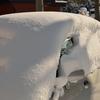 今日も降ったよ、雪かきです…