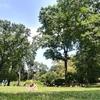 【ニューヨーク/セントラルパーク】一度は訪れたい都会のオアシス、『セントラルパーク』でピクニックや日向ぼっこを