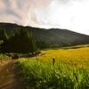 故郷の田園風景