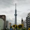 台東区上野公園 東京国立博物館内で五目つゆそばを食べました!!!