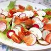 【野菜】市販ドレッシングを使わない簡単・彩り豊かなサラダ!