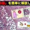 『犬猫の血管肉腫』を簡単に解説してみた!
