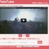 PetaTubeというサービスをリリースしました