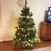 クリスマスツリーをようやく購入
