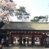 【御朱印プチ情報】さくらの日まいり限定御朱印をいただきに野田市・櫻木神社へ【3月】