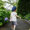 新庄、朝の紫陽花散歩。雨上がりの「あじさいの杜」