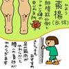 膀胱経(BL)58  飛陽(ひよう)