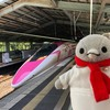 新神戸でハローキティー新幹線のお見送りだ(038)