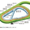 【馬場情報】阪神競馬場