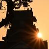 🌇熊本城と日の出が絶景でした!