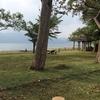秋田から青森への移動で、十和田湖と山道の神秘的な景色を堪能♪